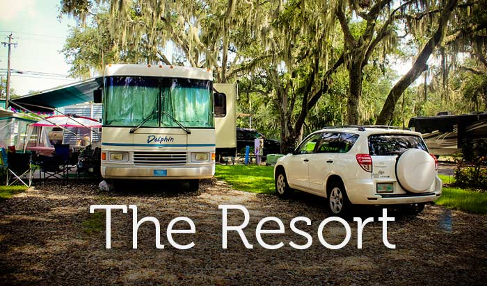 Where Nearly All Campsites Lay Under A Canopy Of Majestic Live Oaks Spanish Moss Hangs From Graceful Branches As Picturesque Frog Creek Meanders By